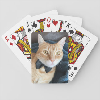 Bow tie cat playing cards
