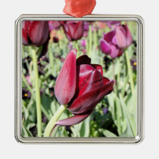 Bowing tulip Silver-Colored square decoration
