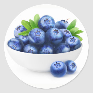 Bowl of blueberries classic round sticker