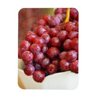 Bowl of Red Grapes Rectangular Photo Magnet
