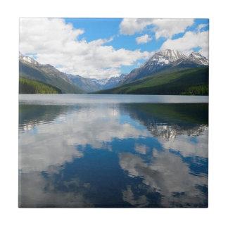 Bowman Lake Tile