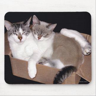 Box Buddies Mousepad