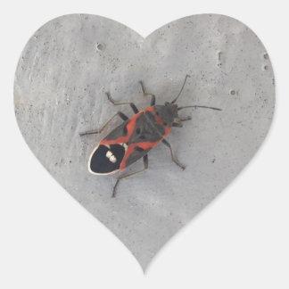 Box Elder Beetle Heart Sticker