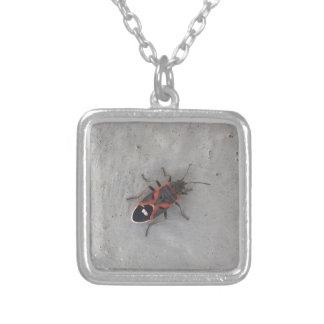 Box Elder Beetle Silver Plated Necklace