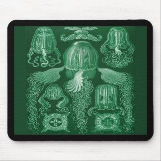 Box Jellyfish Mousepads