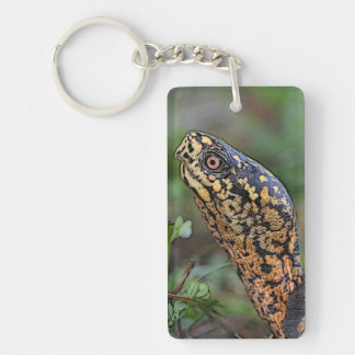 Box Turtle portrait Key Ring