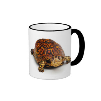 Box Turtle Ringer Mug