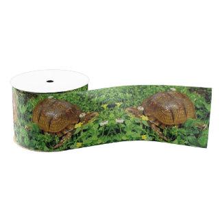Box Turtles Summer Time Turtle Ribbon Grosgrain Ribbon