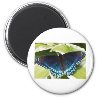 Boxer and Butterfly 6 Cm Round Magnet