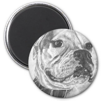 Boxer and Butterfly Fridge Magnet
