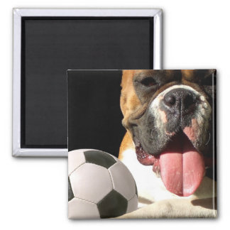 Boxer and Soccer ball magnet