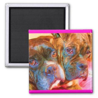 Boxer Art magnet