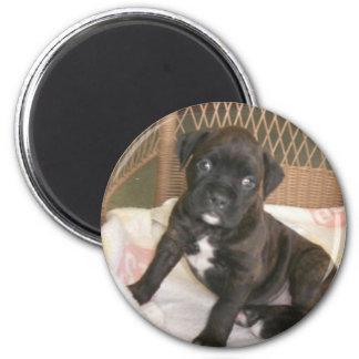 Boxer Baby! 6 Cm Round Magnet