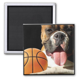 Boxer Basketball Square Magnet