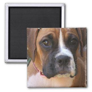 Boxer Dog Design Magnet Refrigerator Magnet