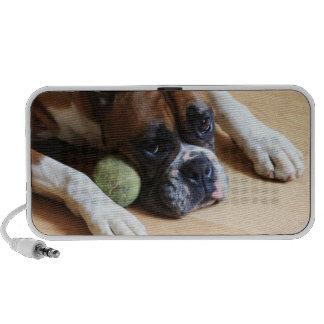 Boxer dog doodle speaker