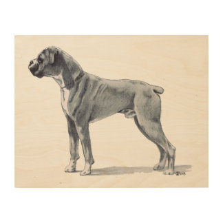 Boxer Dog Drawing Wood Print