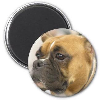 Boxer Dog Face Magnet Refrigerator Magnet