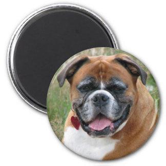 Boxer dog fridge magnet, gift idea 6 cm round magnet