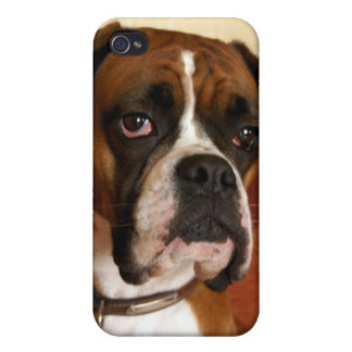 Boxer Dog iPhone 4/4S Cover