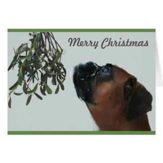 Boxer Dog Jolie with Mistletoe Card