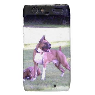 Boxer dog Motorola Droid Razr phone case Droid RAZR Case