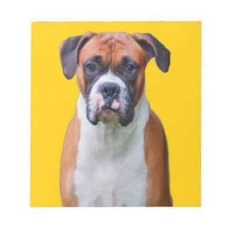 Boxer dog notepad