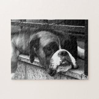 Boxer Dog On Windowsill Jigsaw Puzzle