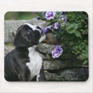 Boxer Dog Panting Mouse Pad