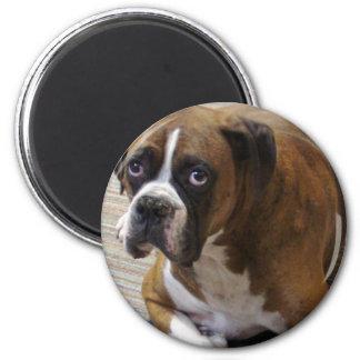 Boxer Dog Round Magnet Refrigerator Magnet