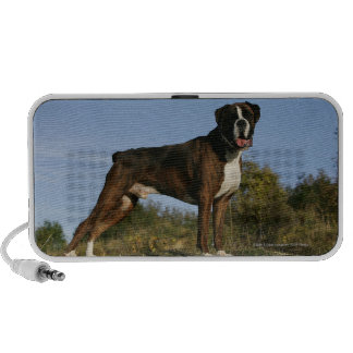 Boxer Dog Show Stance iPhone Speakers