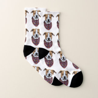 Boxer Dog Socks 1