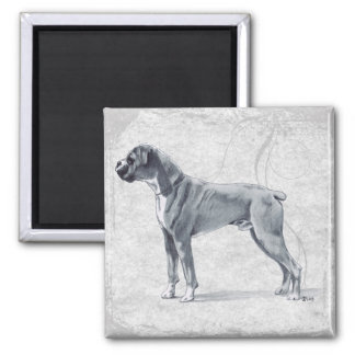 Boxer Dog Standing Square Magnet