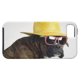 Boxer dog with hat and glasses iPhone 5 case