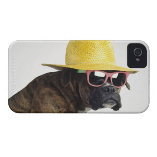 Boxer dog with hat and glasses Case-Mate iPhone 4 case