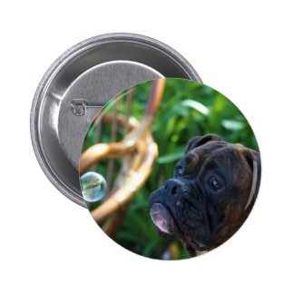 Boxer dogs and bubbles buttons