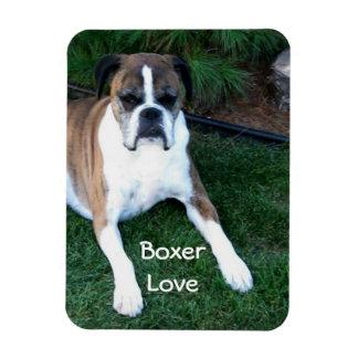 Boxer Love Photo Magnet