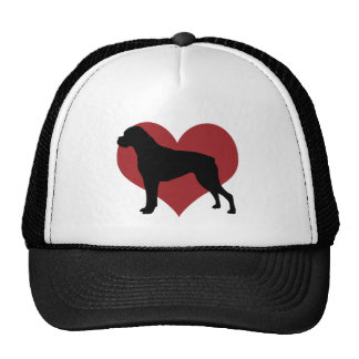 Boxer Mesh Hat