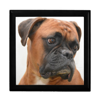 Boxer Portrait Gift Box