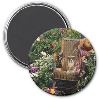 Boxer Pup Magnet In The Garden