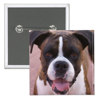Boxer Pup Square Pin