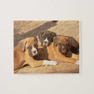 Boxer puppies 8x10 Photo Puzzle with Tin