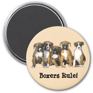 Boxer Puppies Magnet