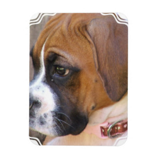 Boxer Puppy Dog Flexible Magnet Rectangular Magnet