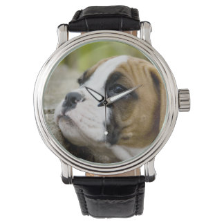 Boxer Puppy Dog Profile Watch