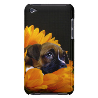 Boxer puppy in sunflower iPod touch cases
