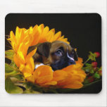 Boxer puppy in Sunflower mousepad