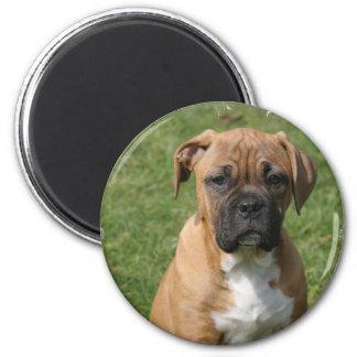 Boxer Puppy Magnet Fridge Magnets