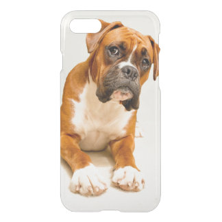 Boxer puppy on ivory cream backdrop. iPhone 7 case