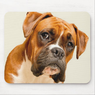 Boxer puppy on ivory cream backdrop. mouse pad